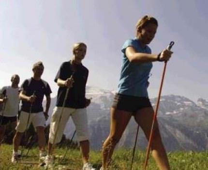 Палки для скандинавской ходьбы